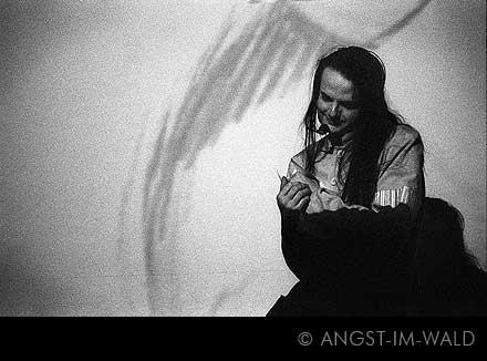 Goethes Erben – Schattendenken 2004 – oswald henke