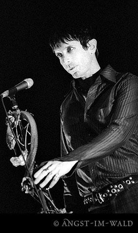 pictures of Mercury Rev Live 2004